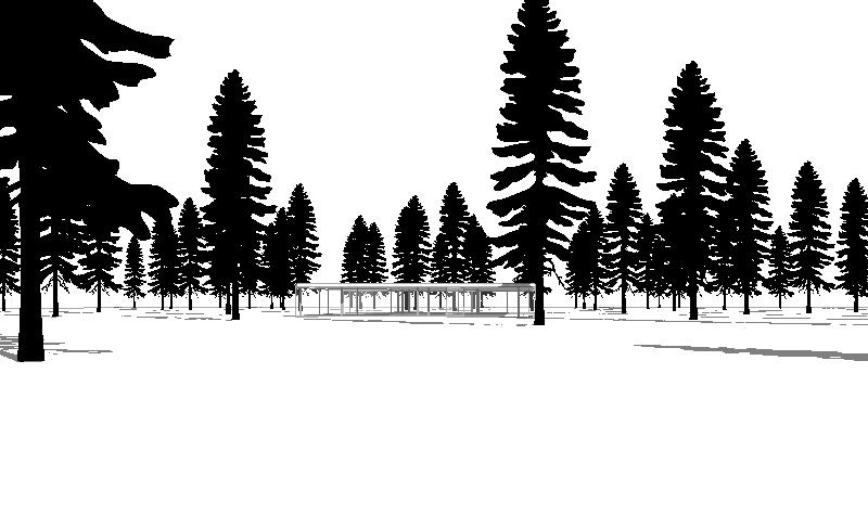 To create natural diversity, combine with other archigrafix trees.